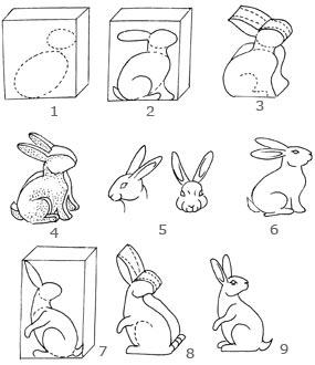 书的侧面简笔画-小白兔的雕法